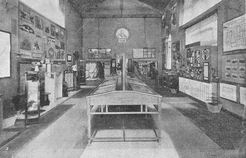 esposizione-1906-3